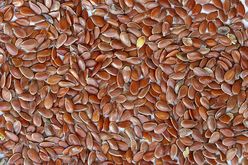 Brown Flax Seeds by Sanjay Acharya